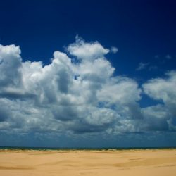 The ocean is a quick hop over the sand dune