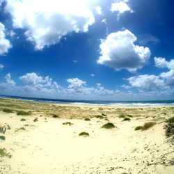 Lovely open beaches to yourself